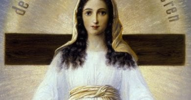 """The Final Dogma"" – Our Lady of All Nations – ""Unique in the history of Marian apparitions because Our Lady gives detailed descriptions of its image"""