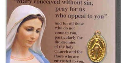 The Special Time Our Lady of Medjugorje Spoke of the Miraculous Medal and Urged the Faithful to Pray for the Salvation of Souls Who Are Carrying the Miraculous Medal.