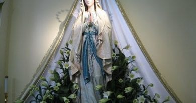 Letter from Romania: Medjugorje Pilgrim Shares Emotional Story and Photos of Our Lady of Lourdes Statue  (Possibly Weeping)  Inside St. James Church