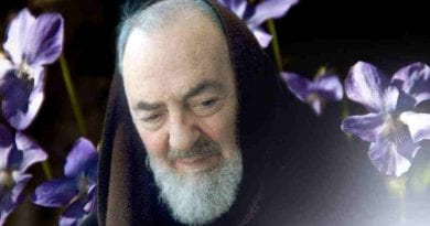 Are you going through a period of anguish and crisis? These words of Padre Pio will lift you up!