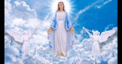 "Medjugorje  – The Assumption. KNOW THAT I AM CLIMBING TO THE SKY BEFORE DEATH"" (message of 15 – 08 – 1981)."