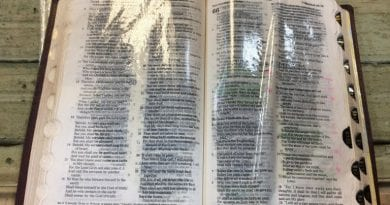 "Report:  Bible Oozing Oil.. ""But it was just in the book of Psalms … Pslams 39-63."""
