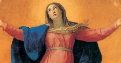 "Supplication to ""Mary Assumed in Heaven"" to be recited today to obtain a grace from the Virgin"