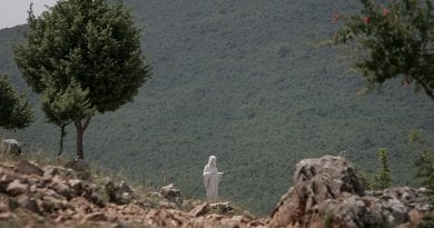 Medjugorje: the miracle of the blind man who recovered his sight…Apparition Hill, the Madonna and the Herbs Under the Pillow