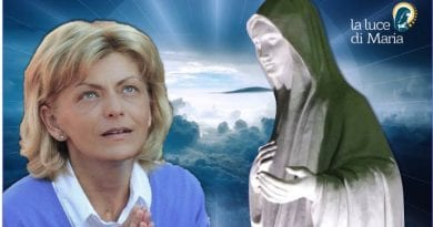 The Ten Secrets of Medjugorje and Sacred Scriptures and the 40 Days of Warnings.