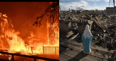 """Queen of Peace Exclusive Report for Mystic Post on California Fire.. """"Where is God?"""" Christine Watkins, reporting near the fire, offers answers."""