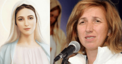 "Marija: ""The Flower appeared to me three times…I could not understand what this vision meant so I asked Our lady""   Medjugorje meditation for this time of Lent…""Give me your wounded heart"""