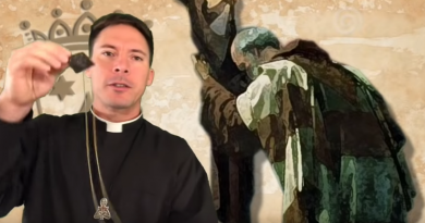 """Brown Scapular Promise – Fr. Mark Goring, CC """"You will not suffer from the eternal fire"""""""
