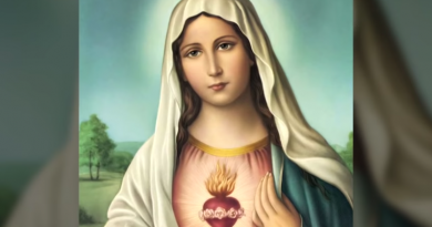 IMPORTANT: How to Start WINNING with the Virgin Mary…Powerful words for today.