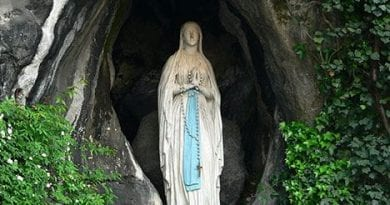 Our Lady of Lourdes Pray for Us! Lourdes' Lesson in Suffering…Two Additudes of Providence