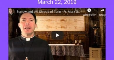 Sorrow and the Shroud of Turin – Fr. Mark Goring