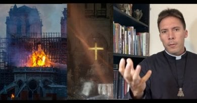 "Notre Dame Cathedral Fire a Sign? – …""Our Lady is appearing throughout the world"" Fr. Mark Goring, CC"