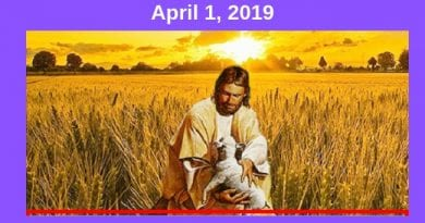 April is the month of Mercy! Here are the promises of Jesus linked to this time of grace.