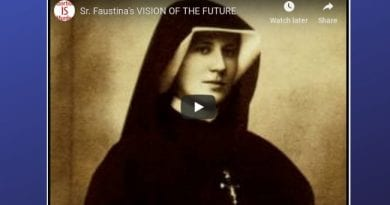 Sr. Faustina's VISION OF THE FUTURE