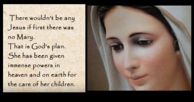 Medjugorje:  The Visionary Ivanka, who see Angels …The Queen Peace has been given immense power in Heaven and on  Earth for the care of her children.