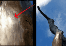 Medjugorje: The unveiled mysteries of the statue of the risen Christ. Real Miracle of God caught on tape…July 17, 2019