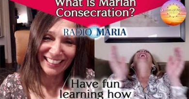 What does Marian Consecration mean? How can I consecrate myself to Mary? Have fun learning how.