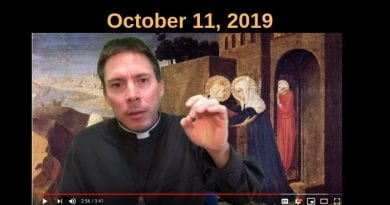 "A message to ""Stupid"" Catholics – Powerful words from Fr. Goring"