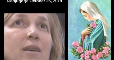 "Medjugorje: The Three Mysteries of the Flower. Words from Heaven Reveal the Hidden Meaning to Visionary…""At first, it was beautiful, fresh, colorful and in the second vision the flower was withering and had lost its beauty."""