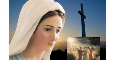 "Medjugorje: Visionary says: ""Angels are real…Our Lady often comes with many angels, small and large. When Our Lady is sad the Angels are sad."""