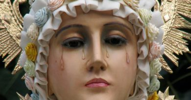 "Our Lady's Warning: What Really Happened at La Salette – .""She wept all the time she spoke to us"" – Church Approved Apparition"