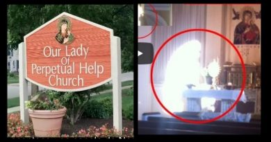 Catholic Captures image of Virgin Mary on Cell Phone turns into online  hullabaloo – Miraculous story reported by Chicago TV station.