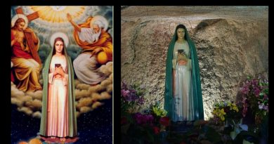 "Powerful: The Mystifying Apparition from Rome known as the Virgin of the Revelation:  Future dogma of the Assumption is revealed to man who persecuted Mary.  ""My body could not be allowed to decay. My Son came for me with His Angels"""