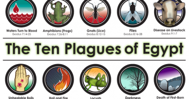 """The """"Ten secrets""""  of Medjugorje and the 10 plagues of Biblical times. Will the """"Ten secrets"""" be the end of the world?""""No not really"""". The visionaries say.""""Rather a new beginning""""."""