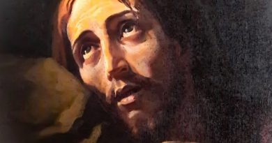 Agony in the Garden ~ Following Jesus Through His Agony