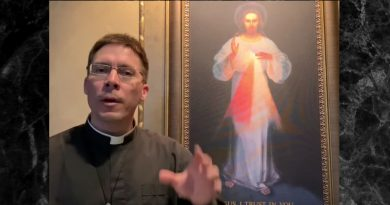 Divine Mercy Image on Door of Home for Protection – Fr. Mark Goring…Pray the THE CROWN OF TWELVE STARS PRAYER