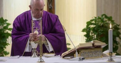 "Pope's Palm Sunday homily…""Do not be afraid, you are not alone. I (Jesus) experienced all your desolation in order to be ever close to you."" Full Text"