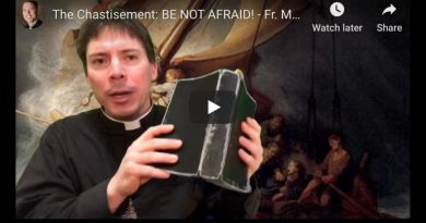 "THIS IS A CHASTISEMENT: and here's why – ""We are experiencing more than a pandemic, this is a chastiesment.""  Fr. Goring"