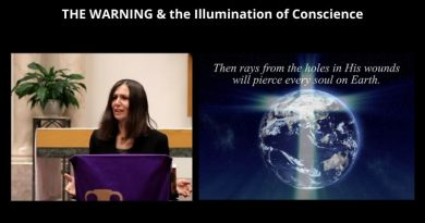 "Christine Watkins explains THE WARNING and the coming Illumination of Conscience…Will prophecy begin ""This Fall""?"