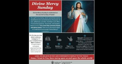 Three conditions for the plenary indulgence – Divine Mercy Sunday…What you need to know.