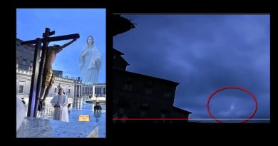 "Hope comes down from Heaven.  Video of Virgin Mary in the sky over St. Peter's square World-wide phenomenon … Jesus to Saint Gertrude – ""Receive a benediction like that given to the Saints, and obtain from God more abundant fruit."""