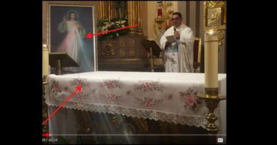 Now Miracle in Mexico: Rays of the Divine Mercy Pour forth during Live stream Mass – Video