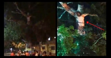 "Crucified Jesus figure appears in tree days before Easter – Witnesses say people gathered around figure and prayed to cure the world of the Coronavirus ""evil""."