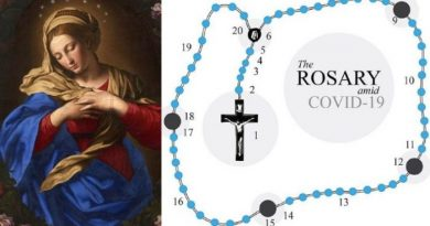 The Coronavirus Pandemic Rosary: 5 Powerful Rosary Devotions to battle the  evil supervirus