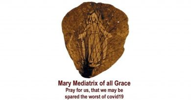 """The rose petal from the 1948 shower of rose petals…""""Our Lady Mary, Mediatrix of All Grace, Pray for us that we may be spared the worst of COVID-19."""""""