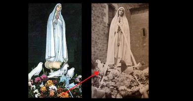 "The little-known miracle of the ""Three Doves"" at Fatima"