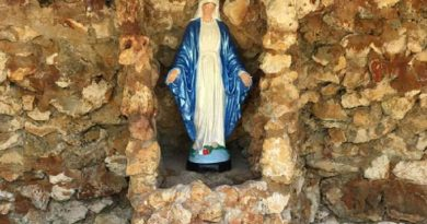 Lost and Forgotten Grotto of the Virgin Mary Found by Knights of Columbus