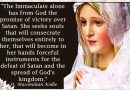Act of Consecration to Mary Immaculate (St. Maximilian Kolbe) .