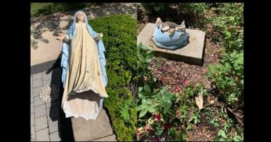 Beautiful Virgin Mary Statue Destroyed – Dark Forces are Descending Across the Land.
