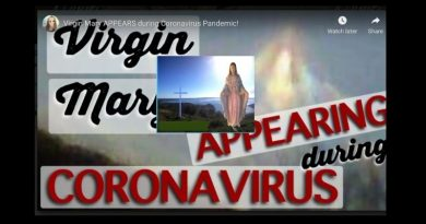 Virgin Mary APPEARS during Coronavirus Pandemic!
