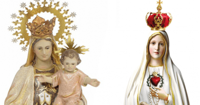 The mystical link between Fatima and the Madonna del Carmelo. 'The Rosary and the Scapular are inseparable' Sr. Lucia confirms
