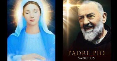 "Little Known Prophecy About Medjugorje – Padre Pio announced:  ""The Blessed Virgin Mary will soon be visiting your homeland."""