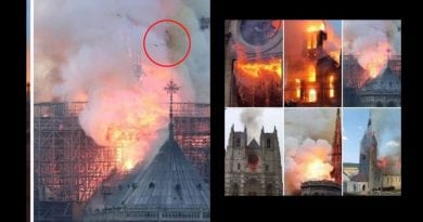 A French Cathedral burns, a mother weeps – Some on social media say photo captured image of the Virgin Mary looking down at the firestorm.