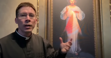 Coronavirus (and other calamities) : Put Divine Mercy Image on Door of Home for Protection – Fr. Mark Goring