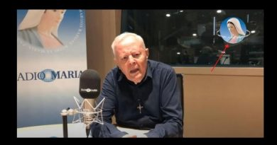 "Radio Maria, the director Father Livio: ""The coronavirus is a criminal project of world elites to eliminate those who are not there and reduce us to zombies"""