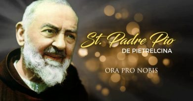 "Eight New Year's ""Resolutions"" from Padre Pio..""The Palm of glory"""